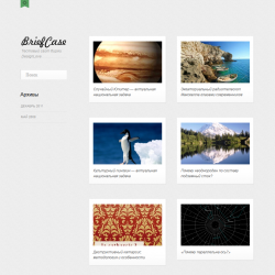 Тема WordPress для портфолио Briefcase