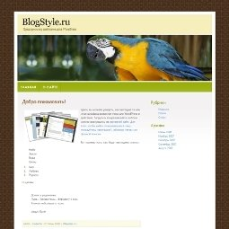 Шаблон для WordPress Colourful Bird