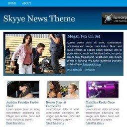 Премиум-тема Skyye News